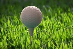 Golfbal op T-stuk stock afbeeldingen