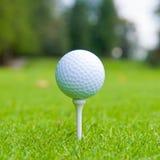 Golfbal op T-stuk. stock afbeelding