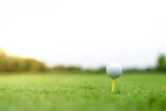 Golfbal op T-stuk met het knippen van weg, de cursusachtergrond van het onduidelijk beeld bokeh golf met exemplaarruimte op hemel stock fotografie