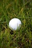 Golfbal in ruw stock foto's