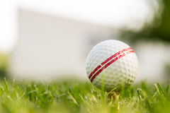 Golfbal in schot grass Stock Afbeeldingen
