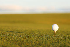 Golfbal and tee. Golfball and tee at the green Stock Images