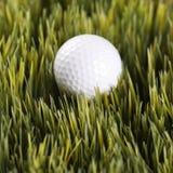 golfball στήριξη χλόης Στοκ φωτογραφία με δικαίωμα ελεύθερης χρήσης