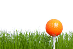 Golfball. On a tee - isolated on a white backgorund Royalty Free Stock Photography