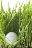 golfball Royaltyfri Foto