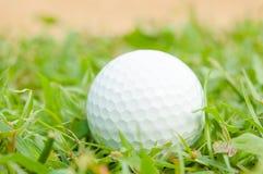 Golfball Royaltyfri Bild