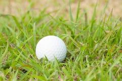 Golfball Royaltyfri Fotografi