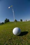 Golfball auf dem Grün Lizenzfreie Stockfotos
