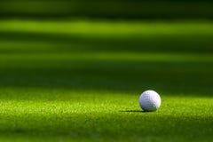 Golfball auf dem Grün Stockfotografie
