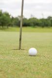 Golfball auf dem Grün Stockbild