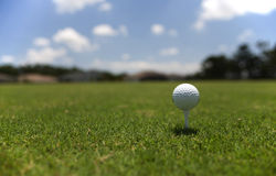 Golfball auf dem T-Stück Stockfotografie