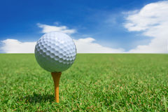 Golfball auf einem Grün stockbild