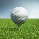 Golfball auf Feld des grünen Grases Stockfotografie
