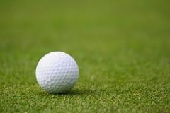 Golfball auf Grün stockbild