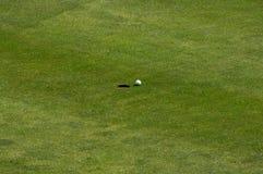 Golfball auf grünem Feld Stockfoto