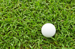Golfball auf grünem Gras Lizenzfreies Stockbild