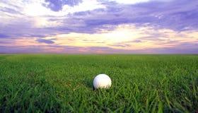 Golfball auf grünem Gras Lizenzfreie Stockfotos
