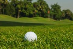 Golfball auf grünem Gras Stockfotografie
