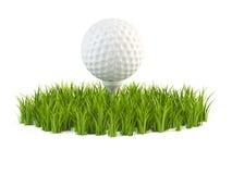 Golfball auf Gras Stockfotos