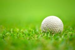 Golfball auf Gras Lizenzfreie Stockfotos