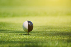 Golfball auf Gras Lizenzfreie Stockfotografie