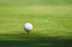 Golfball auf Gras Lizenzfreies Stockbild