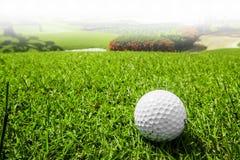 Golfball auf Kurs stockbilder