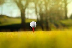 Golfball auf Kurs lizenzfreie stockbilder