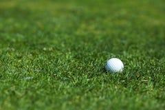 Golfball auf Kurs Lizenzfreie Stockfotos