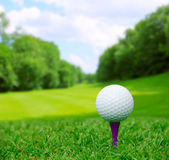 Golfball auf Kurs Lizenzfreies Stockbild