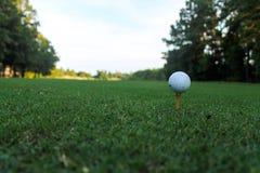 Golfball auf T-Stück an einer niedrigen Perspektive lizenzfreie stockfotos