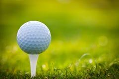 Golfball auf T-Stück Stockfotografie