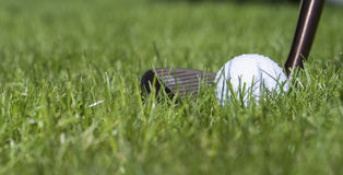 Golfball with club in grass Stock Image