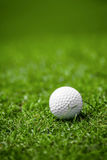 Golfball on course Royalty Free Stock Photography
