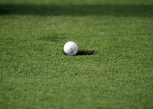 Golfball falling in the hole Royalty Free Stock Photo