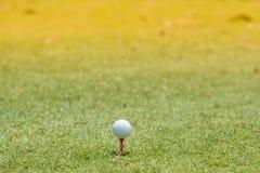 Golfball gesetzt auf den Rasen lizenzfreies stockbild