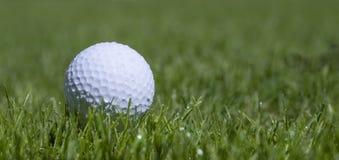 Golfball in gras royalty-vrije stock foto