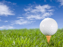 Golfball on the grass. Golf ball in the grass on the tee Stock Photography