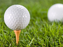 Golfball on the grass. Golfball in the grass on the tee Stock Photo