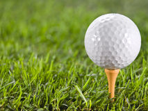 Golfball on the grass. Golfball in the grass on the tee Stock Image