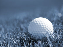 Golfball in grass Royalty Free Stock Photos