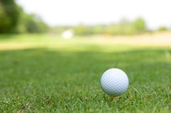 Golfball in the grass. Golfball on the grass tee Royalty Free Stock Photography