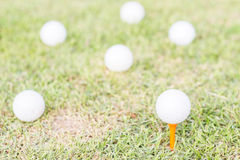golfball on grass. Stock Images