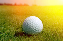 Golfball in grass Stock Photography