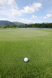 Golfball on grass Royalty Free Stock Image