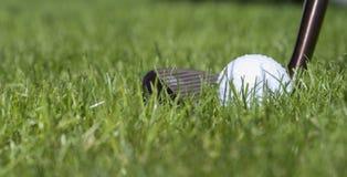 Golfball med klubban i gräs Fotografering för Bildbyråer