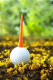 Golfball mit gelber Blume Stockfotografie