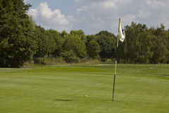 Golfball op fairway Stock Foto's