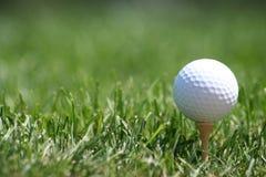 Golfball op T-stuk Royalty-vrije Stock Fotografie