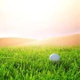 Golfball på golfbanan Arkivfoto